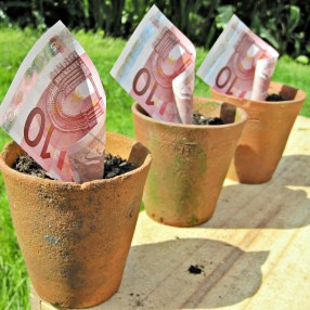 """Euros in a plant pot"" by Images_of_Money is licensed under CC BY 4.0. Retrieved from Flickr."